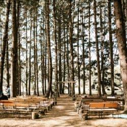 הפקת חתונה ביער